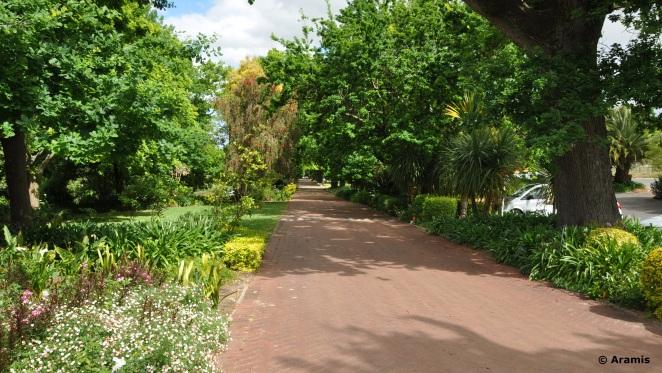 Neethlingshof_Stellenbosch_viale