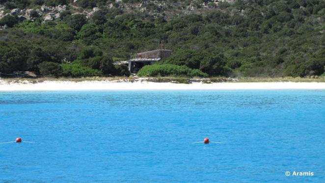 Spiaggia rosa_Sardegna