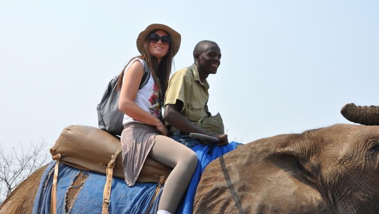 Safari_elefanti_Zimbabwe