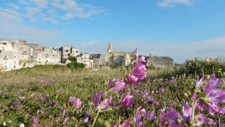 Gravina in Puglia 3