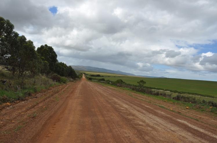 Garden Route 4